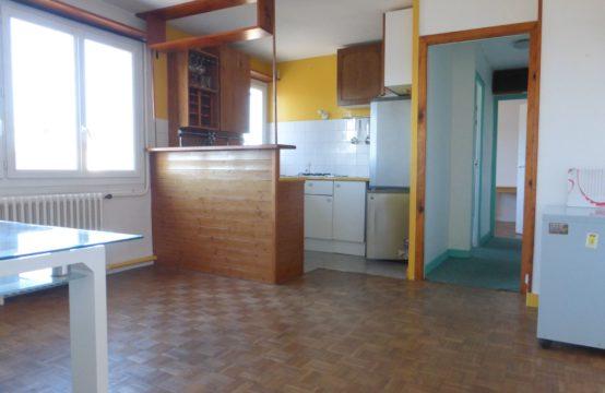 Nantes centre: Appartement 3 pièces de 50m²